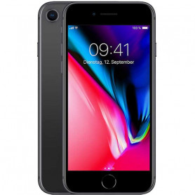 Apple iPhone 8 4G 256GB space gray