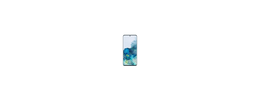Samsung Galaxy S20 (SM-G981)