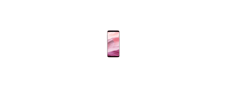 Samsung Galaxy S8 (SM-G950)
